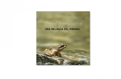Rana pyrenaica, una reliquia del pirineo